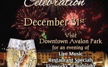 2016 Avalon Park New Year's Eve
