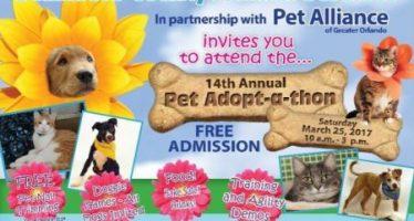 Seminole County Pet Adopt-a-thon