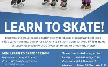 RDV Ice Den Learn to Ice Skate