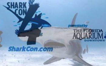 SharkCon 2017 in Tampa
