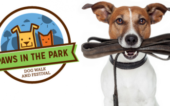 2017 Orlando Paws in the Park