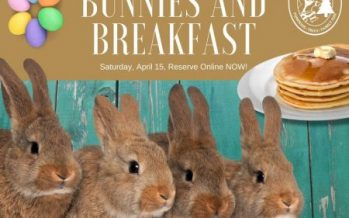 Bunnies and Breakfast at Santa's Farm