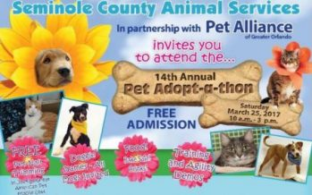 Seminole County Pet Adopt-a-thon