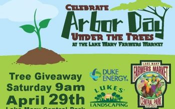 Lake Mary Arbor Day Under the Trees