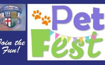 Bring Your Dog to Pet Fest