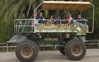 Ten Great Ways to Experience Gatorland