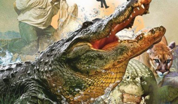 Gatorland Alligator Safety Tips