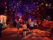 Halloween Horror Nights Orlando Review