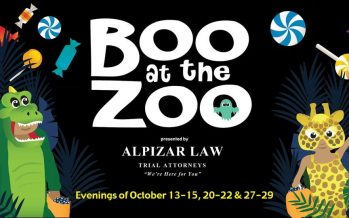 Boo at the Brevard Zoo 2017