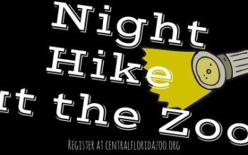 Night Hike at the Zoo 2018