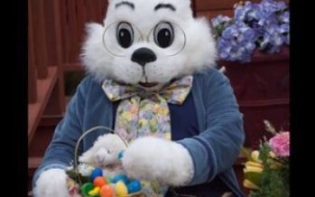 Easter Bunny at the Florida Mall 2018
