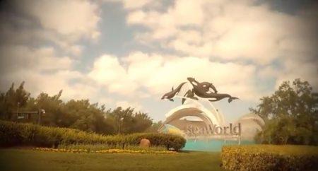 SeaWorld Seven Seas Festival Family Video Review 2018