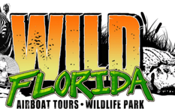 Wild Florida Sloth Week 2018
