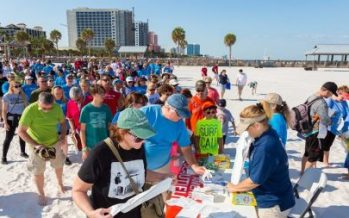 Sea Turtle Awareness Day Event 2018