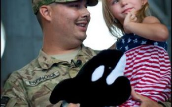 SeaWorld Free Admission to US Veterans
