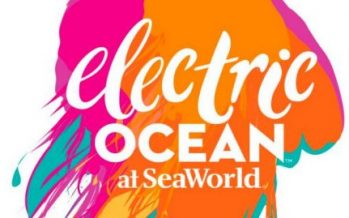 SeaWorld's Electric Ocean Returns