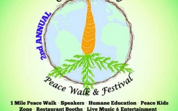 Orlando Peace Walk Festival 2018