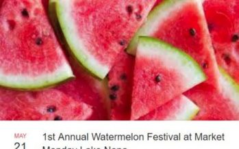 Lake Nona Market Watermelon Festival