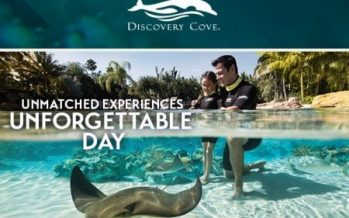 Florida Residents Deal at Discovery Cove