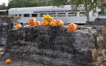 Central Florida Pumpkin Patch Express 2018