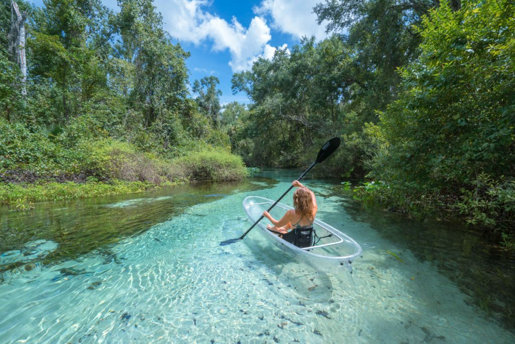 Clear Kayak Tour in Central Florida