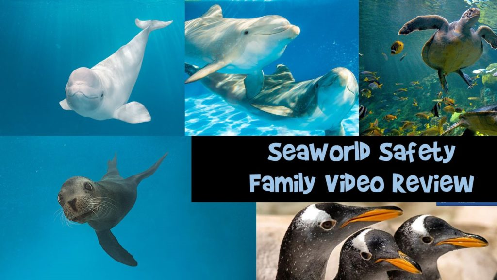 SeaWorld Safety Family Video Review
