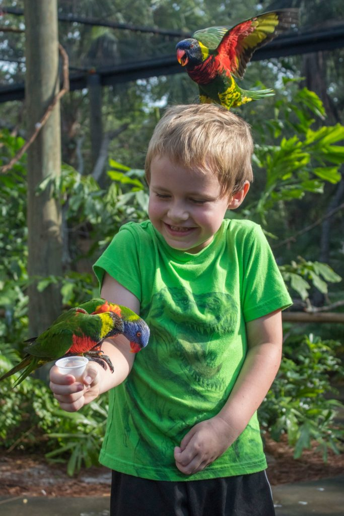 Brevard Zoo Voted Top Zoo in Florida
