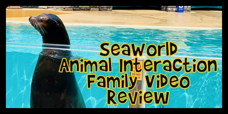 SeaWorld Animal Interactions Family Video Review 2021